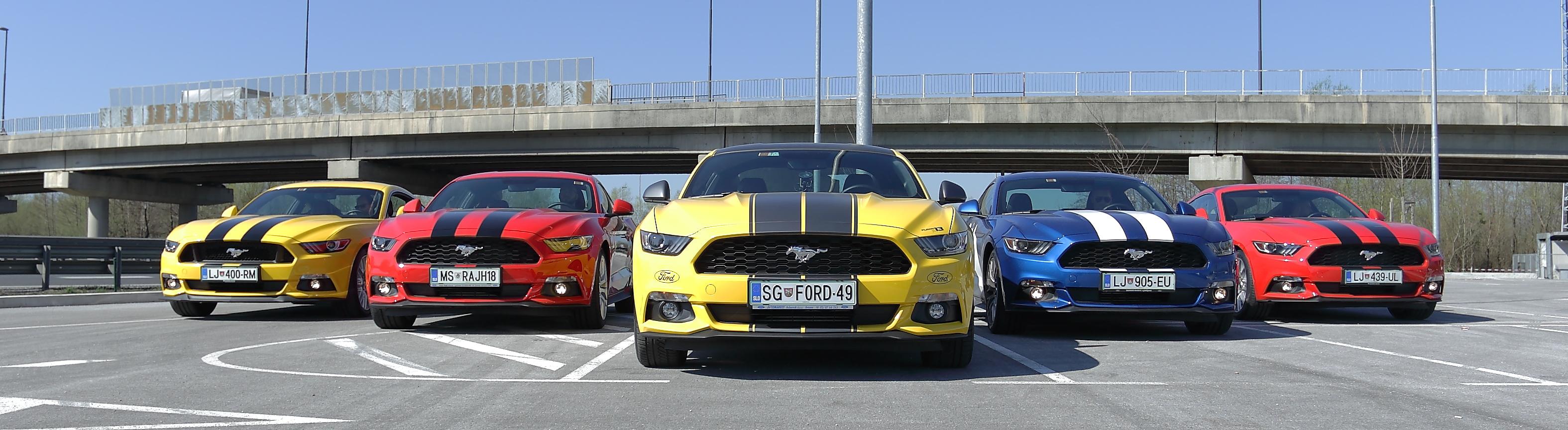 Mustangi so kraljevali na Gospodarskem razstavišču.