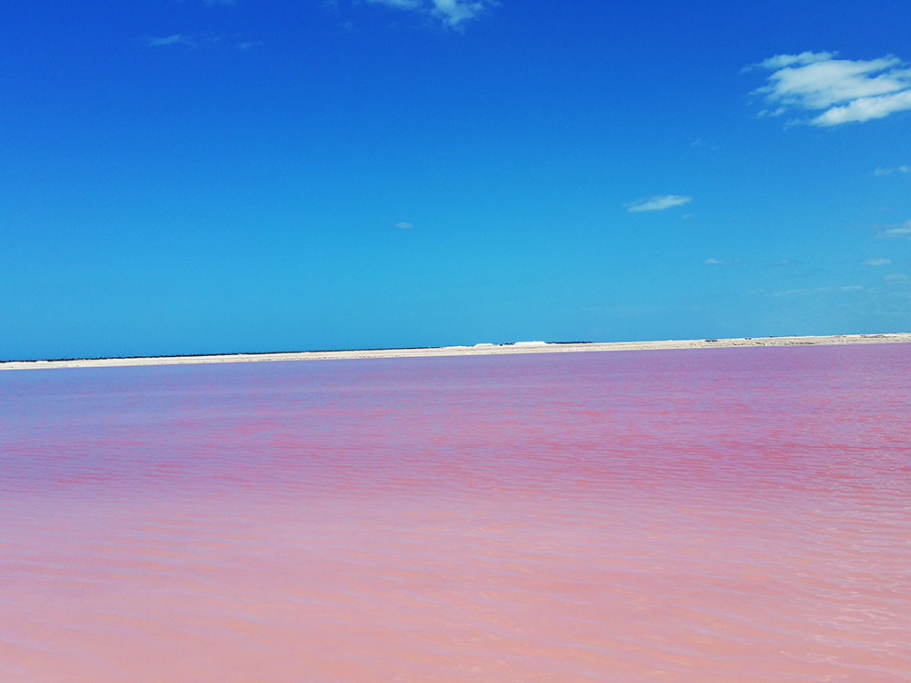 M_1_zgoraj_pink_lagoon