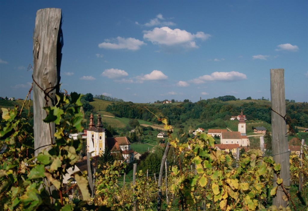 Medimurska vinska cesta