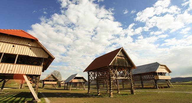 Muzej-kozolcev
