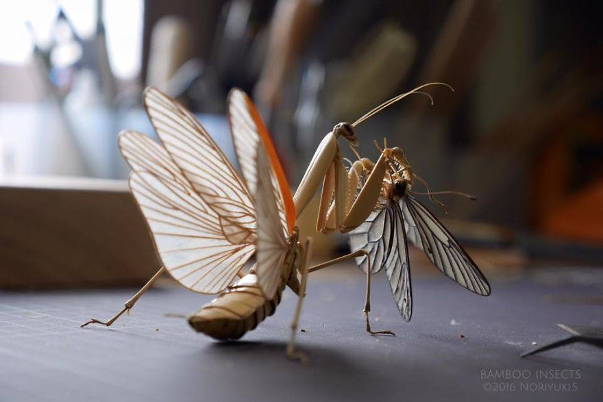 The-Japanese-artist-who-creates-life-size-insects-exclusively-from-bamboo-will-impress-you-59e0898644207__880