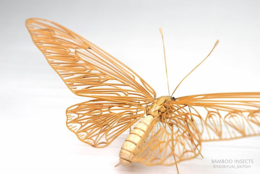 The-Japanese-artist-who-creates-life-size-insects-exclusively-from-bamboo-will-impress-you-59e089f8d6d68__880