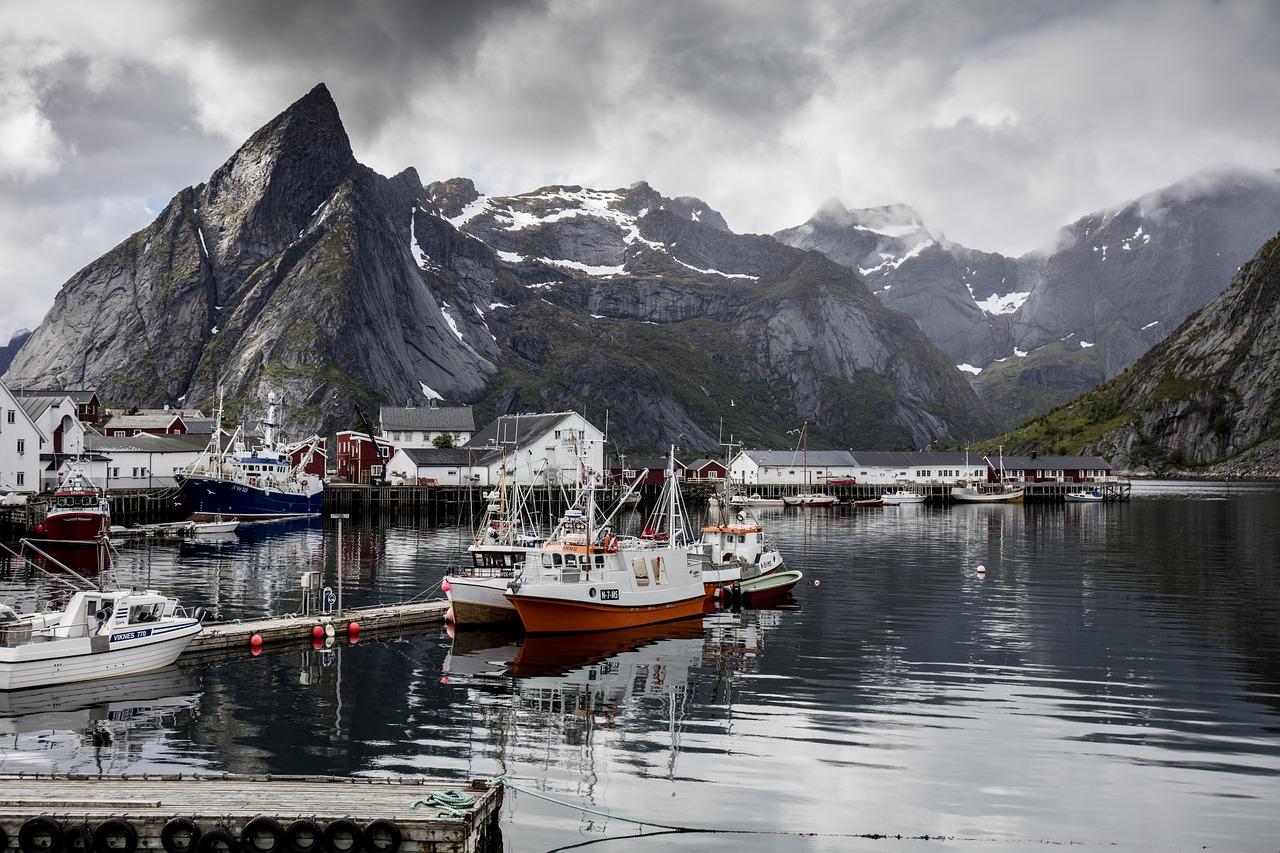 reine norveška